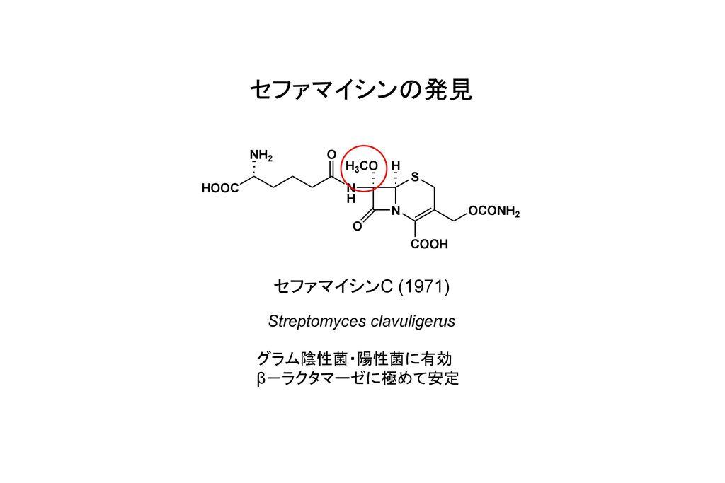 セファマイシンの発見 セファマイシンC (1971) Streptomyces clavuligerus グラム陰性菌・陽性菌に有効