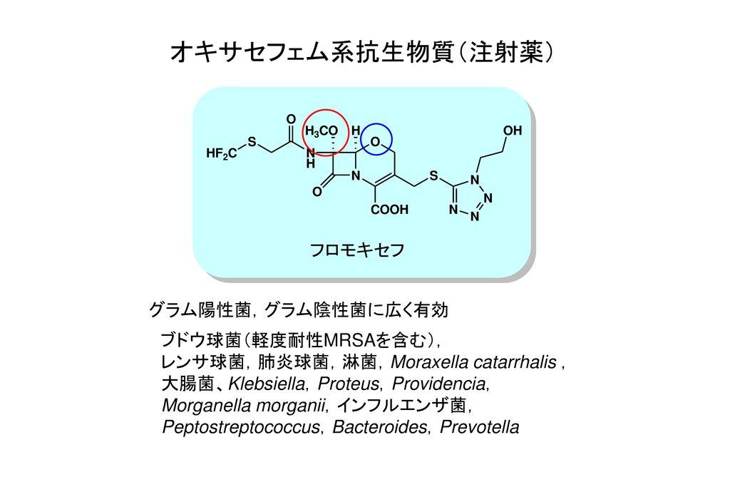 オキサセフェム系抗生物質(注射薬) フロモキセフ グラム陽性菌,グラム陰性菌に広く有効 ブドウ球菌(軽度耐性MRSAを含む),