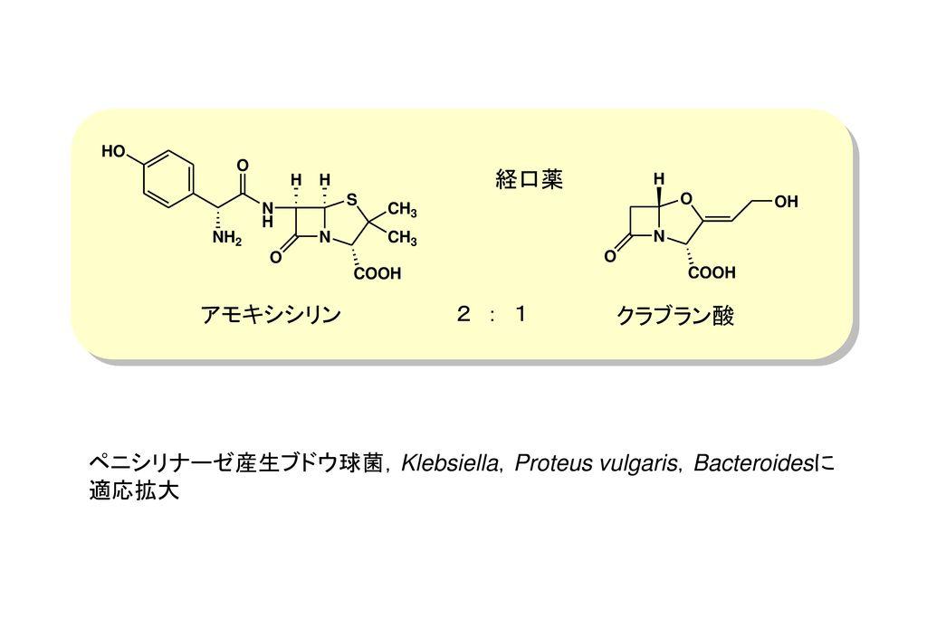 経口薬 アモキシシリン 2 : 1 クラブラン酸 ペニシリナーゼ産生ブドウ球菌,Klebsiella,Proteus vulgaris,Bacteroidesに適応拡大