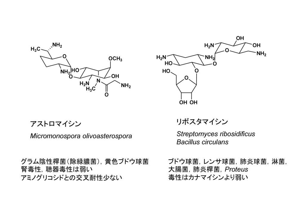 リボスタマイシン アストロマイシン Streptomyces ribosidificus Bacillus circulans