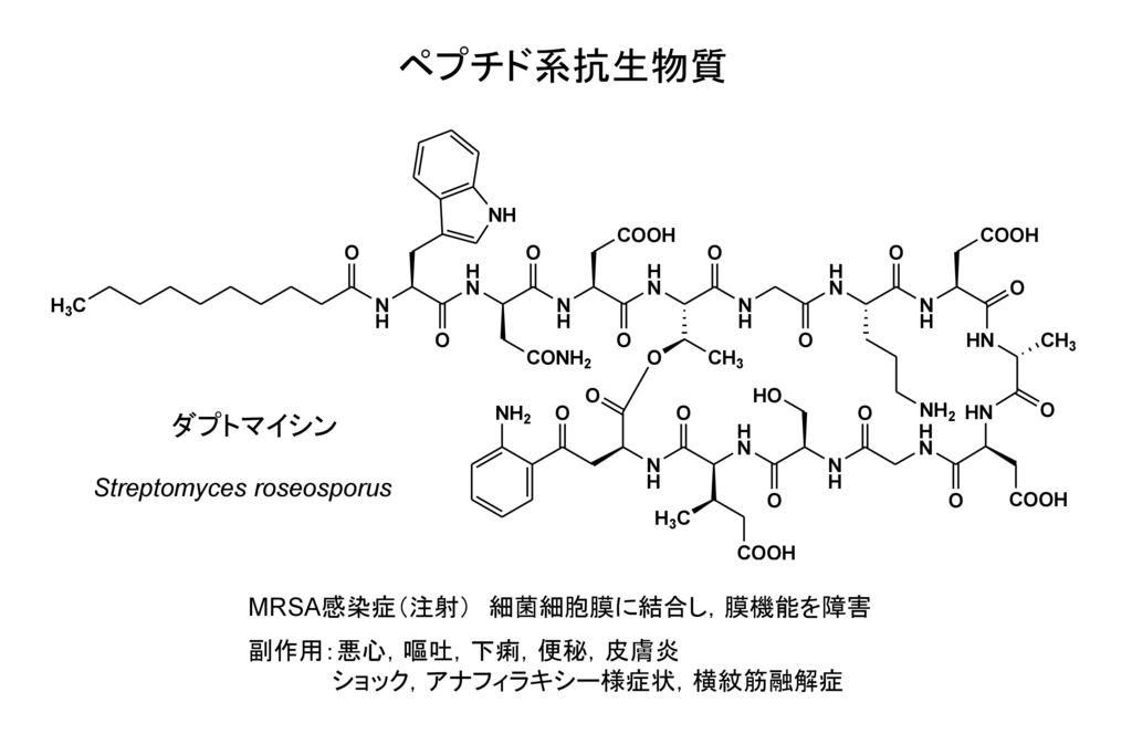 ペプチド系抗生物質 ダプトマイシン Streptomyces roseosporus