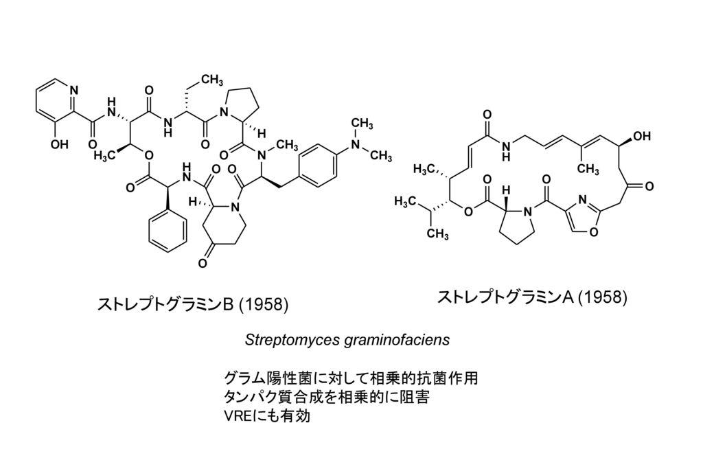 ストレプトグラミンA (1958) ストレプトグラミンB (1958) Streptomyces graminofaciens