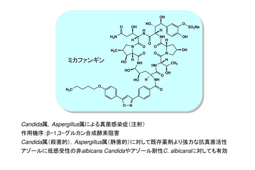 ミカファンギン Candida属,Aspergillus属による真菌感染症(注射) 作用機序:βー1,3ーグルカン合成酵素阻害