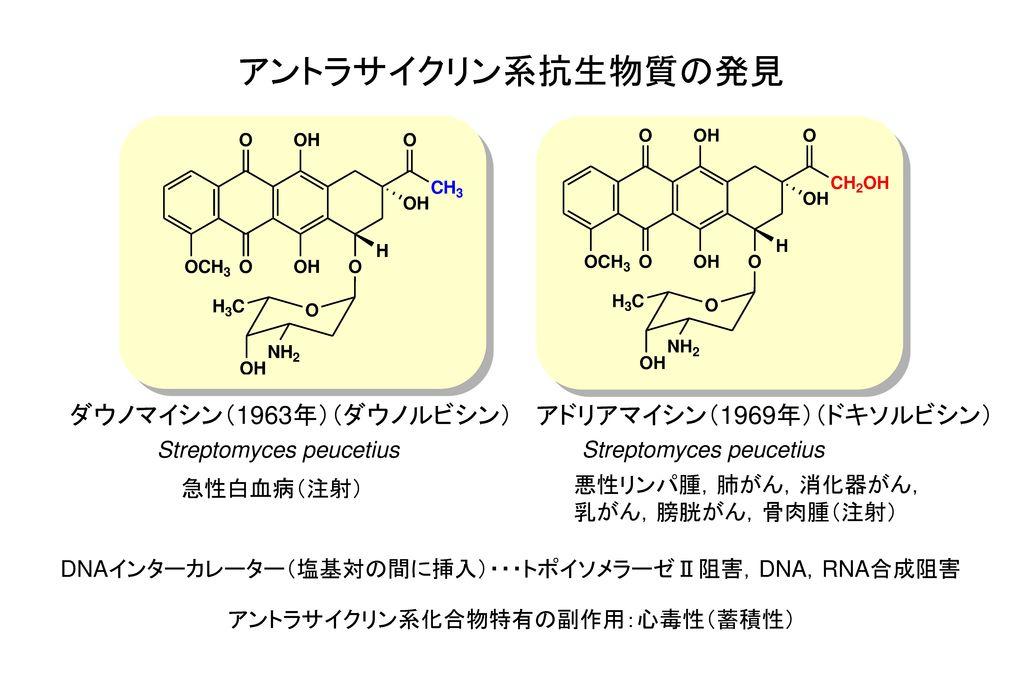 アントラサイクリン系抗生物質の発見 ダウノマイシン(1963年)(ダウノルビシン) アドリアマイシン(1969年)(ドキソルビシン)