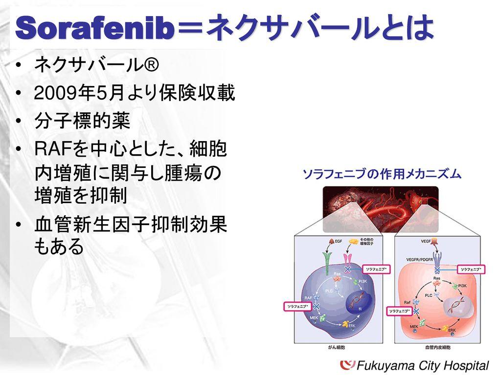 Sorafenib=ネクサバールとは ネクサバール® 2009年5月より保険収載 分子標的薬
