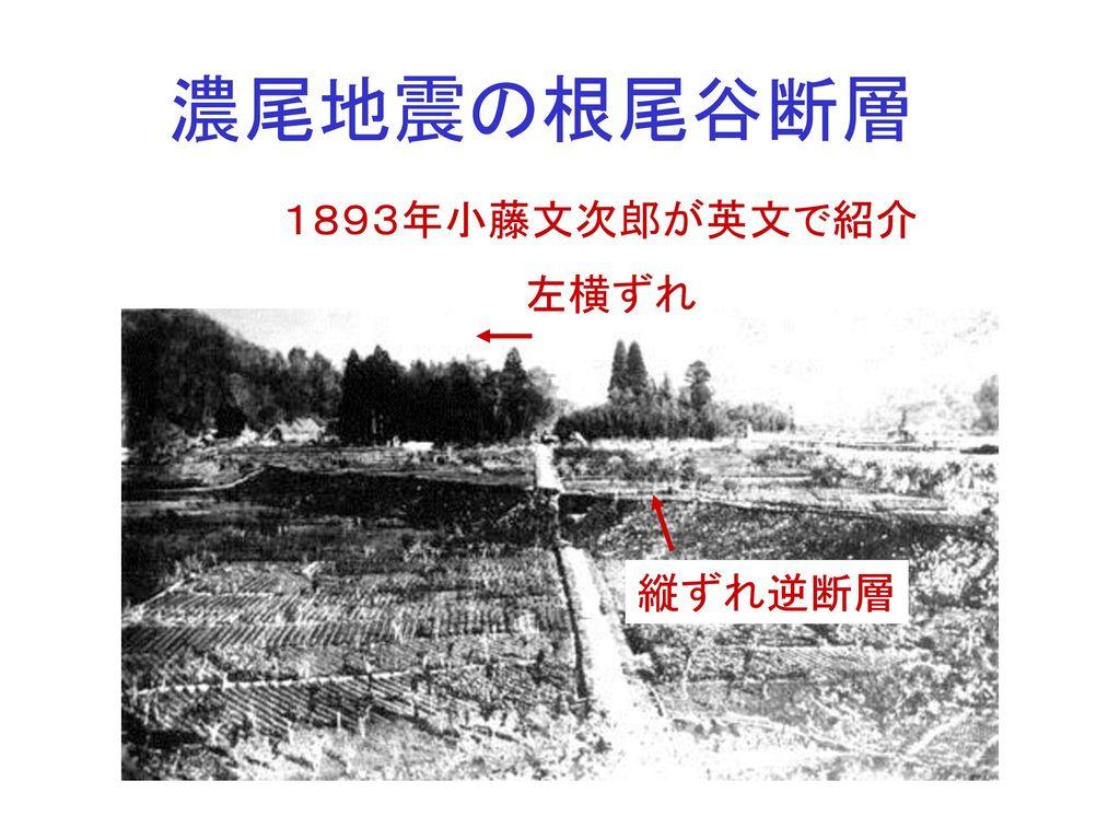 濃尾地震の根尾谷断層 1893年小藤文次郎が英文で紹介 左横ずれ 縦ずれ逆断層