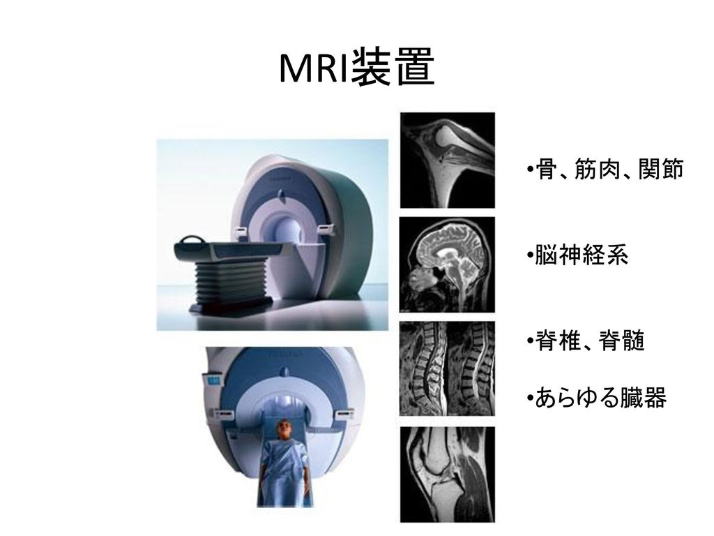 MRI装置 骨、筋肉、関節 脳神経系 脊椎、脊髄 あらゆる臓器