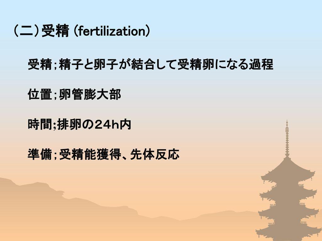 (二)受精 (fertilization)