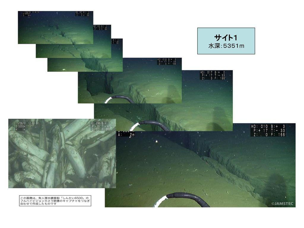 サイト1 水深:5351m