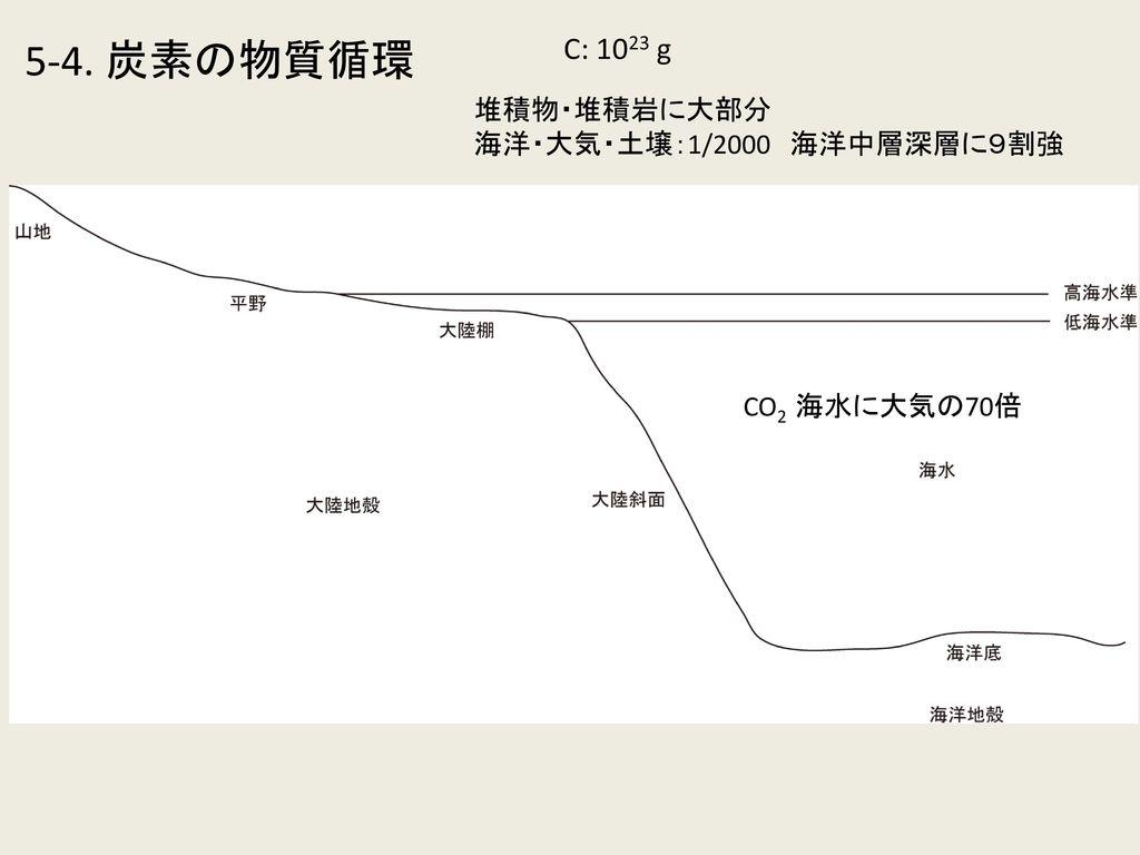 5-4. 炭素の物質循環 C: 1023 g 堆積物・堆積岩に大部分 海洋・大気・土壌:1/2000 海洋中層深層に9割強