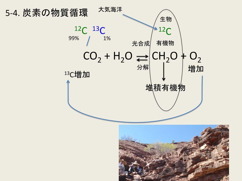 CO2 + H2O CH2O + O2 12C 13C 12C 5-4. 炭素の物質循環 増加 13C増加 堆積有機物 大気海洋 生物
