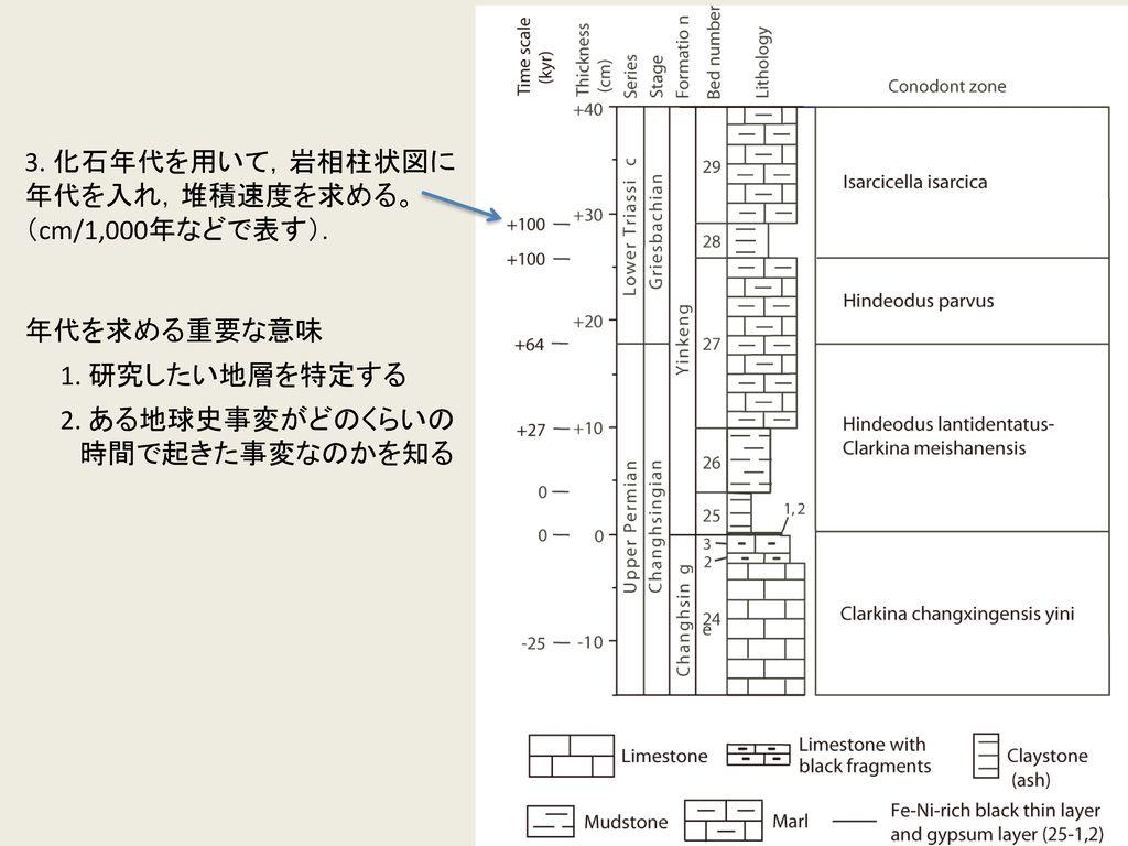 3. 化石年代を用いて,岩相柱状図に 年代を入れ,堆積速度を求める。 (cm/1,000年などで表す). 年代を求める重要な意味. 1. 研究したい地層を特定する. 2. ある地球史事変がどのくらいの.