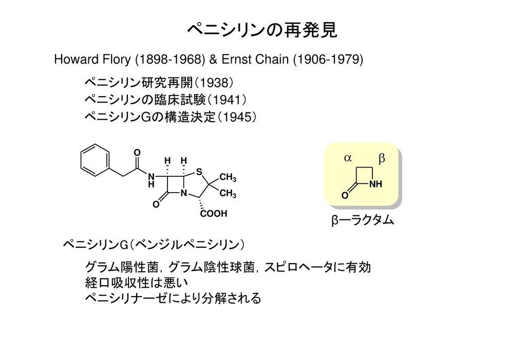 ペニシリンの再発見 Howard Flory (1898-1968) & Ernst Chain (1906-1979)