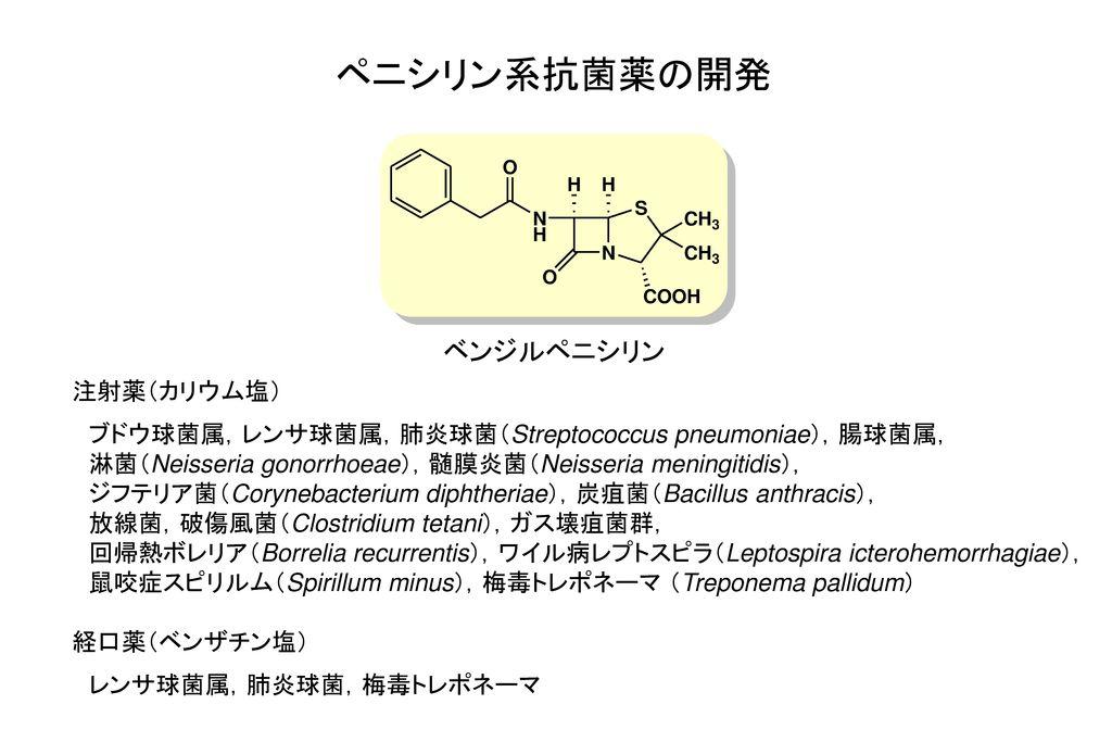 ペニシリン系抗菌薬の開発 ベンジルペニシリン 注射薬(カリウム塩)