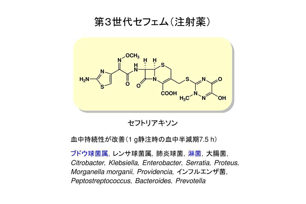 第3世代セフェム(注射薬) セフトリアキソン 血中持続性が改善(1 g静注時の血中半減期7.5 h)