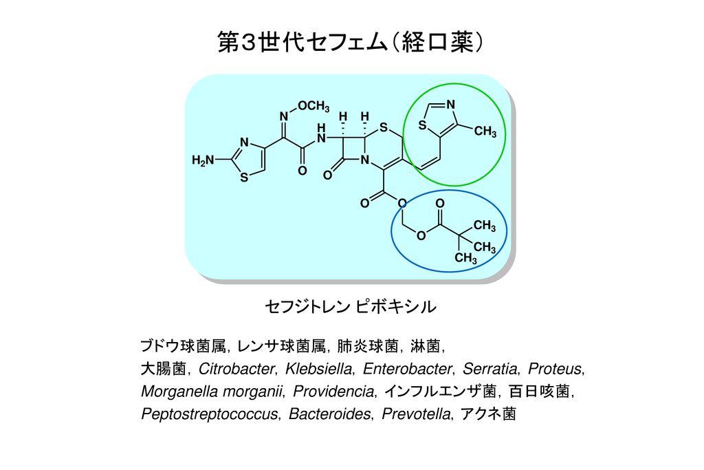 第3世代セフェム(経口薬) セフジトレン ピボキシル ブドウ球菌属,レンサ球菌属,肺炎球菌,淋菌,