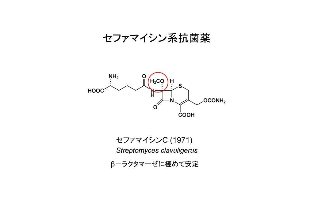 セファマイシン系抗菌薬 セファマイシンC (1971) Streptomyces clavuligerus β-ラクタマーゼに極めて安定