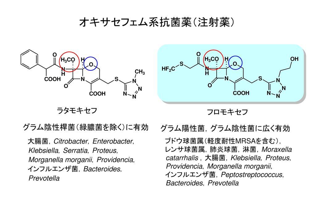 オキサセフェム系抗菌薬(注射薬) ラタモキセフ フロモキセフ グラム陰性桿菌(緑膿菌を除く)に有効 グラム陽性菌,グラム陰性菌に広く有効