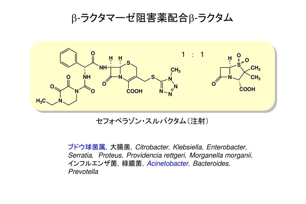 b-ラクタマーゼ阻害薬配合b-ラクタム 1 : 1 セフォペラゾン・スルバクタム(注射)