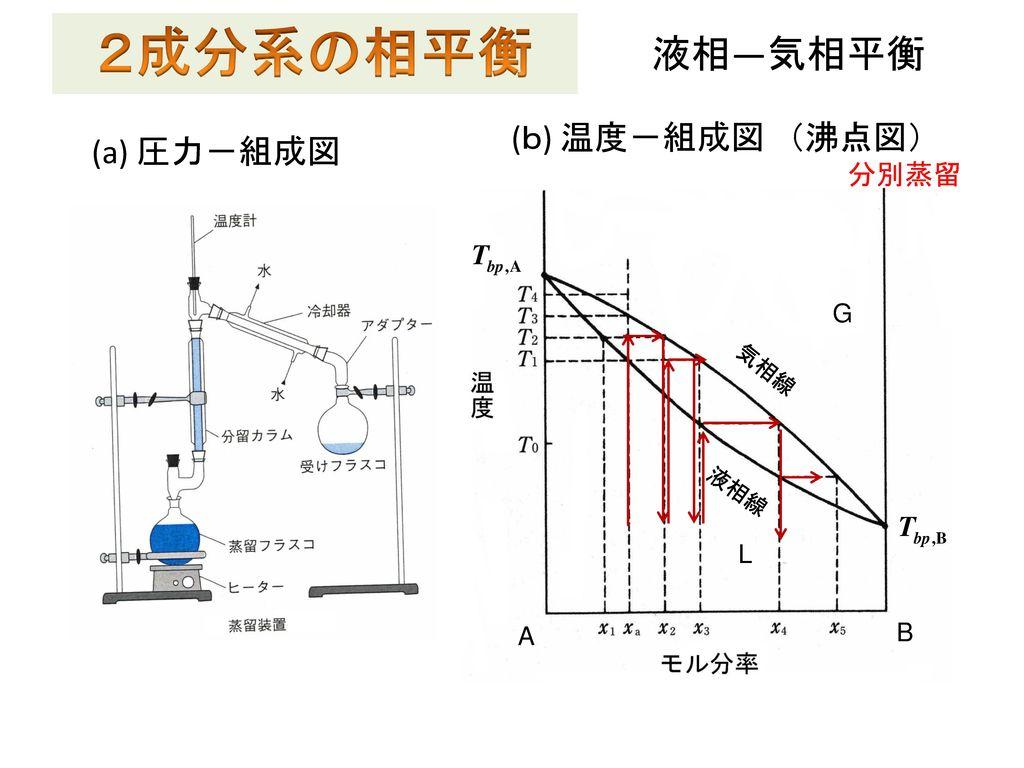 2成分系の相平衡 液相―気相平衡 (b) 温度-組成図 (沸点図) (a) 圧力-組成図 分別蒸留 L G G A B L B A 液相線