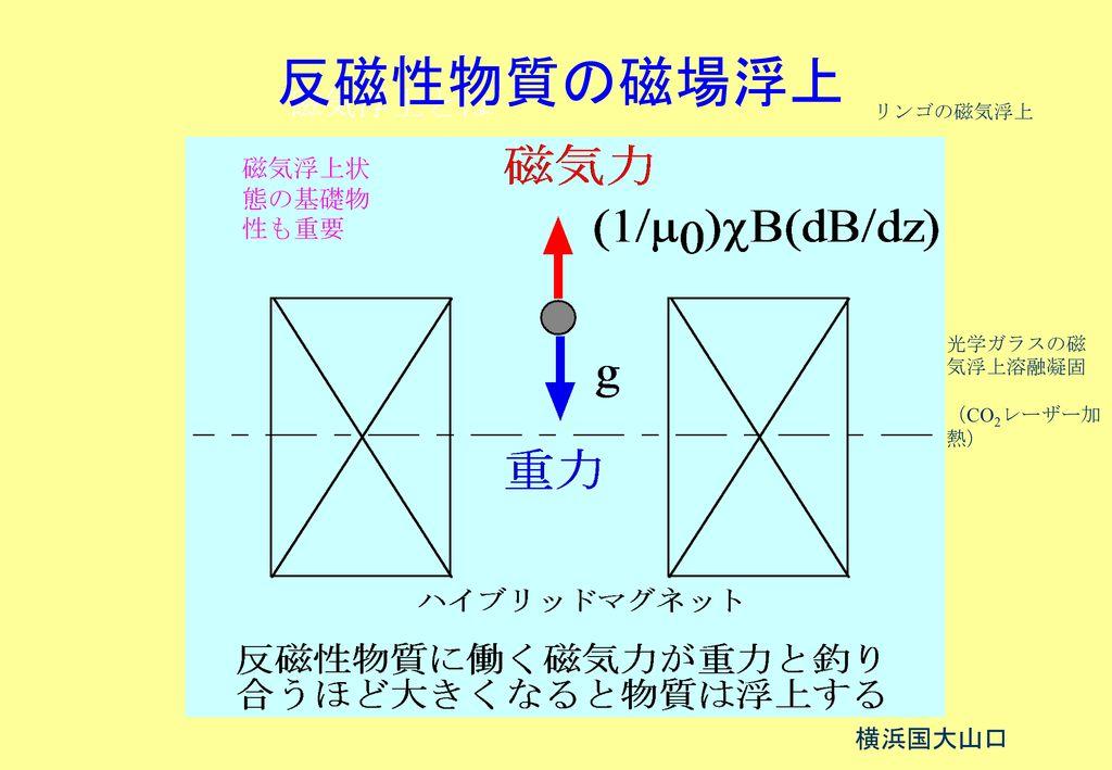 反磁性物質の磁場浮上 磁気浮上とは 磁気浮上状態の基礎物性も重要 横浜国大山口 リンゴの磁気浮上 光学ガラスの磁気浮上溶融凝固