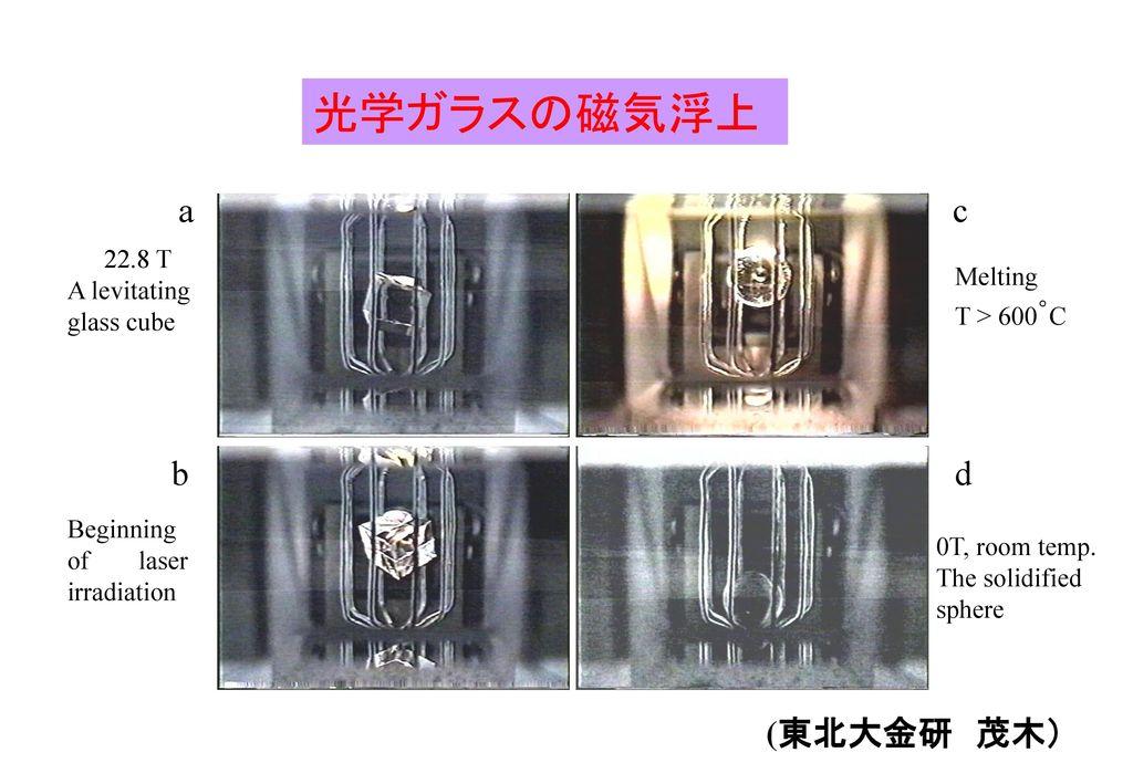 光学ガラスの磁気浮上 a b c d (東北大金研 茂木) 22.8 T A levitating glass cube Melting