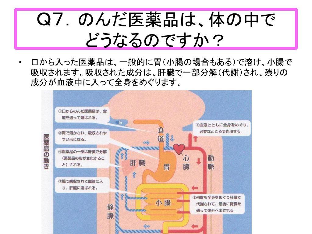 Q7.のんだ医薬品は、体の中で どうなるのですか?