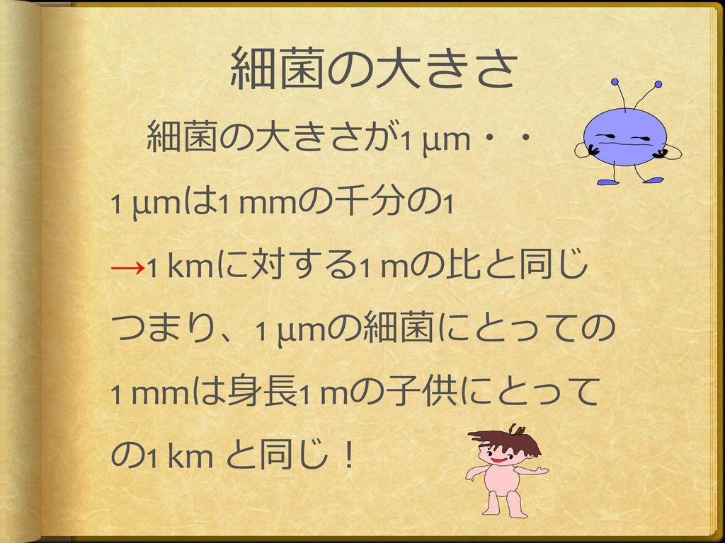細菌の大きさ 1 μmは1 mmの千分の1 →1 kmに対する1 mの比と同じ つまり、1 μmの細菌にとっての
