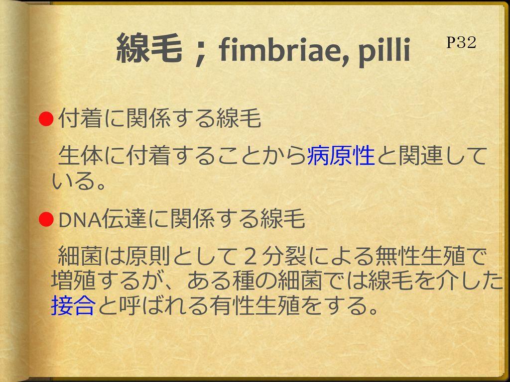 線毛;fimbriae, pilli P32.