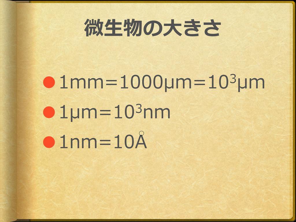 微生物の大きさ ●1mm=1000μm=103μm ●1μm=103nm ●1nm=10A ○