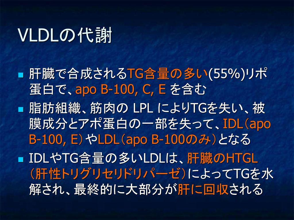 VLDLの代謝 肝臓で合成されるTG含量の多い(55%)リポ蛋白で、apo B-100, C, E を含む