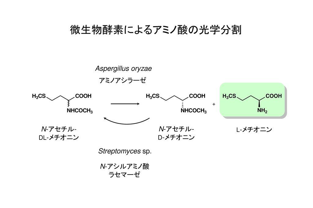 微生物酵素によるアミノ酸の光学分割 Aspergillus oryzae アミノアシラーゼ N-アセチル- N-アセチル-