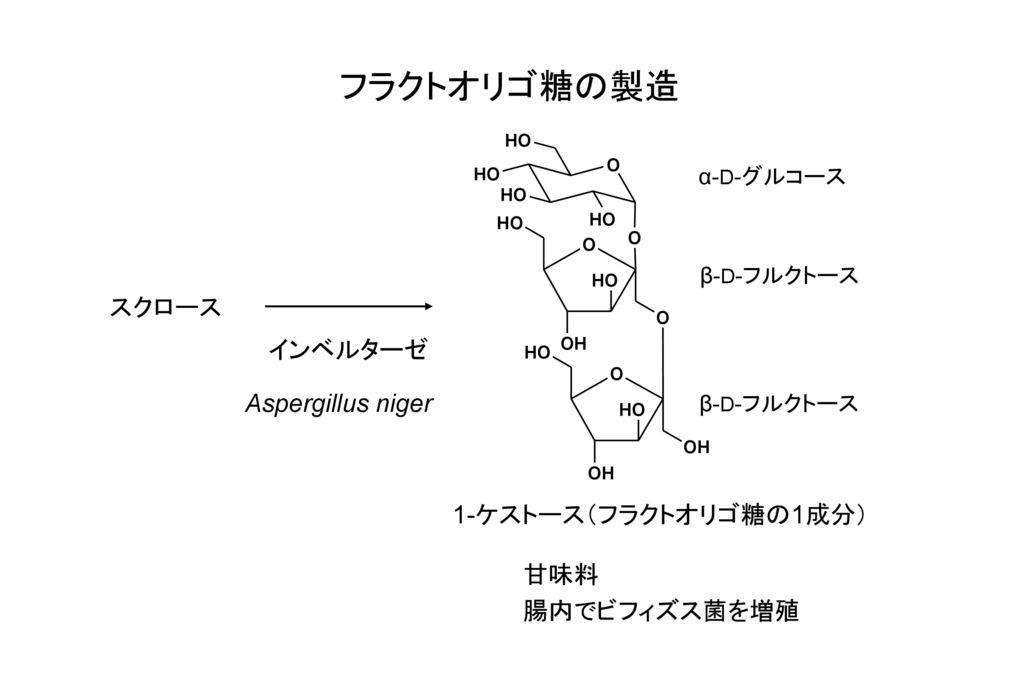 フラクトオリゴ糖の製造 スクロース インベルターゼ Aspergillus niger 1-ケストース(フラクトオリゴ糖の1成分) 甘味料