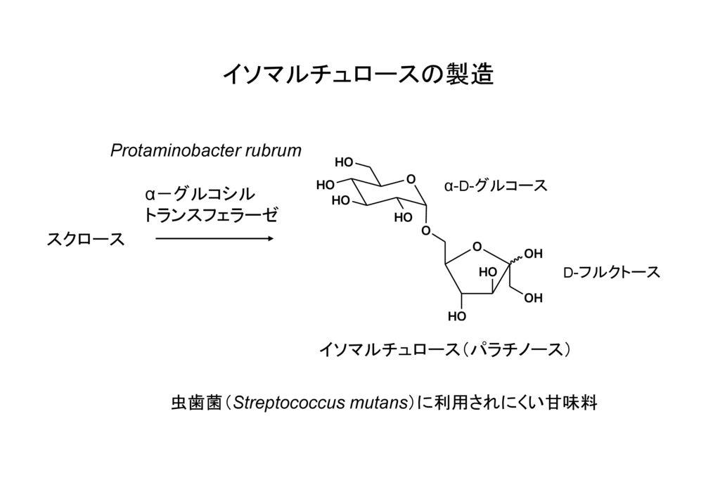 イソマルチュロースの製造 Protaminobacter rubrum α-グルコシル トランスフェラーゼ スクロース