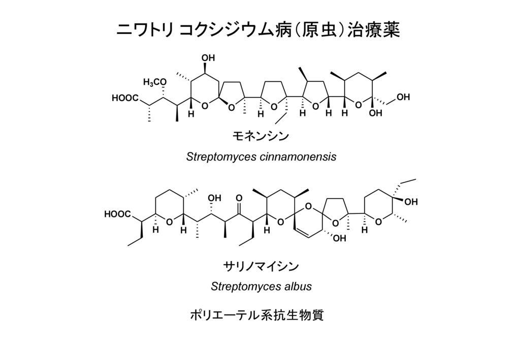 Streptomyces cinnamonensis