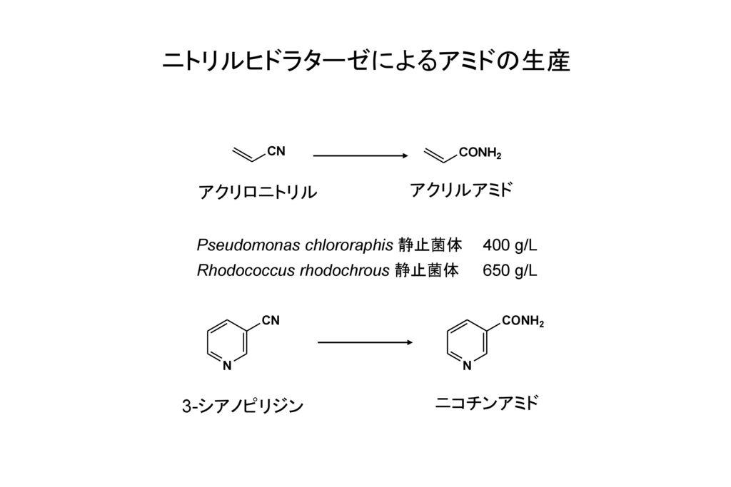 ニトリルヒドラターゼによるアミドの生産 アクリロニトリル アクリルアミド ニコチンアミド 3-シアノピリジン