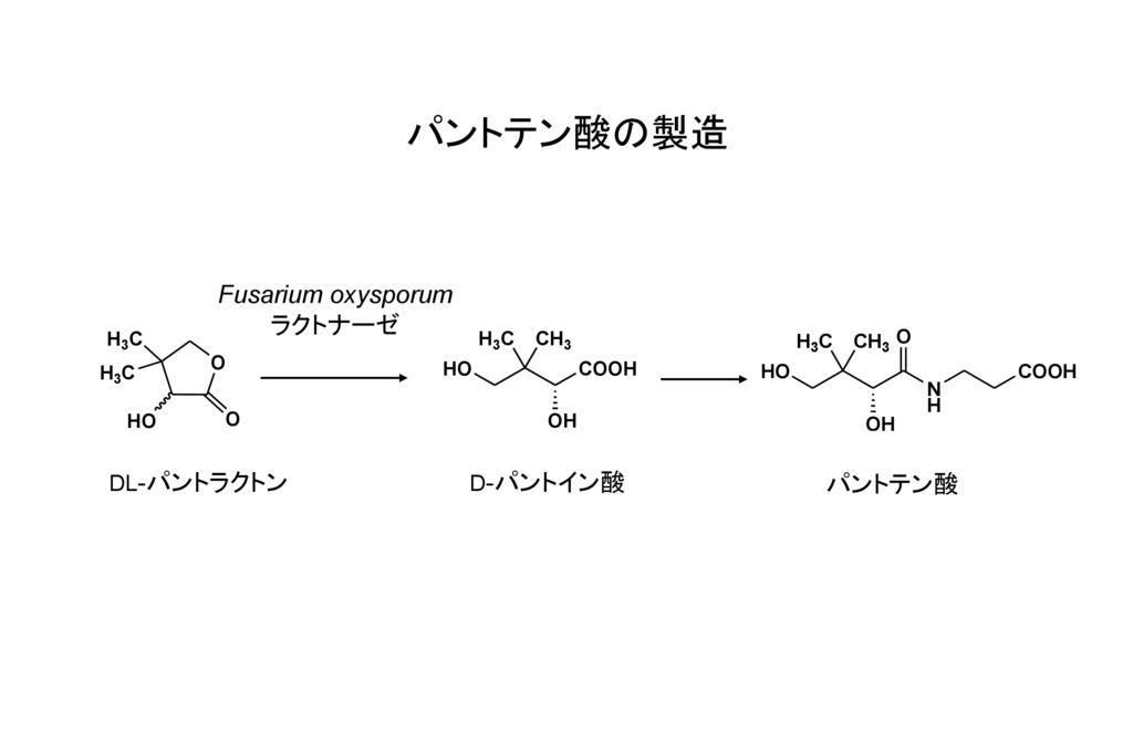 パントテン酸の製造 Fusarium oxysporum ラクトナーゼ DL-パントラクトン D-パントイン酸 パントテン酸