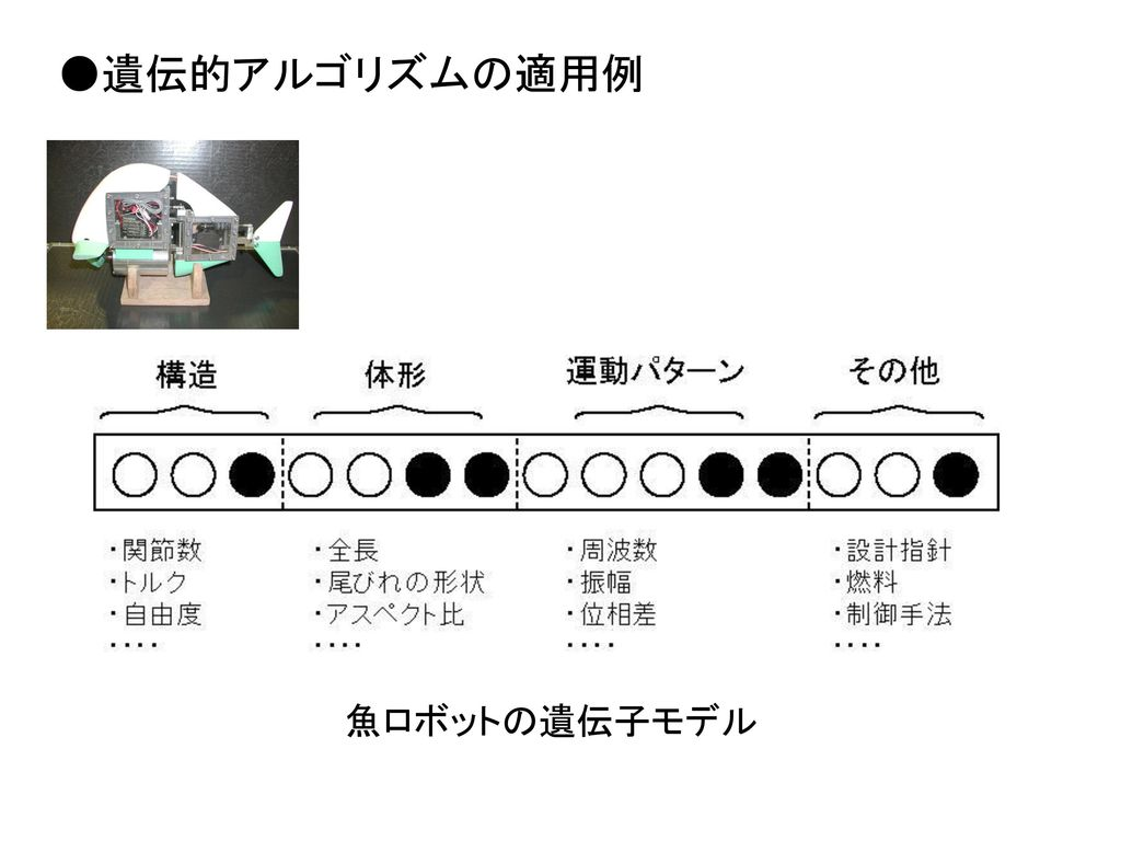 ●遺伝的アルゴリズムの適用例 魚ロボットの遺伝子モデル