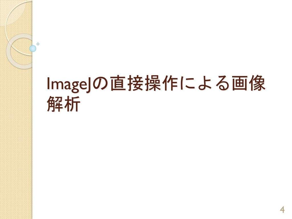 ImageJの直接操作による画像解析