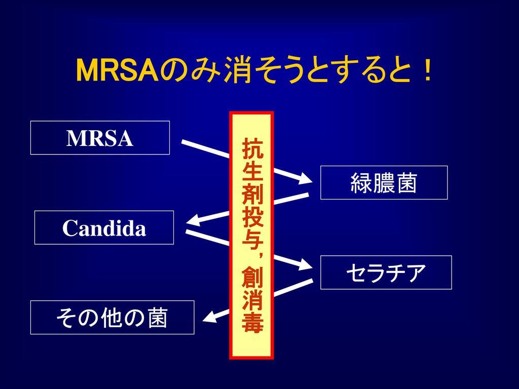 MRSAのみ消そうとすると! 抗生剤投与,創消毒 MRSA 緑膿菌 Candida セラチア その他の菌