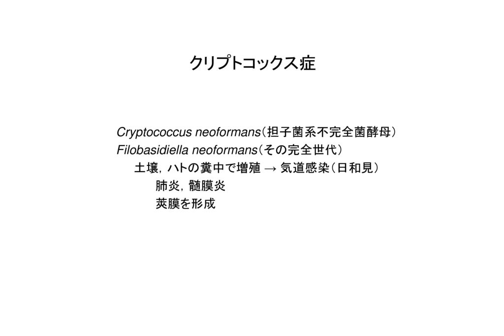 クリプトコックス症 Cryptococcus neoformans(担子菌系不完全菌酵母)