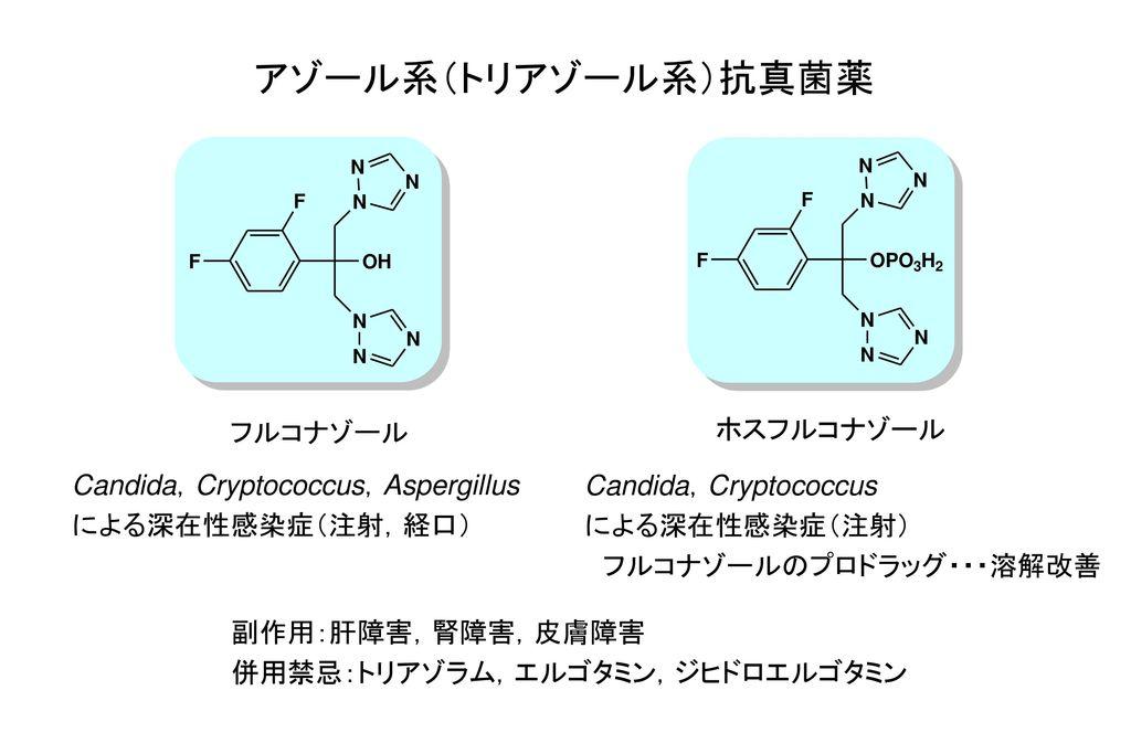 アゾール系(トリアゾール系)抗真菌薬 フルコナゾール ホスフルコナゾール Candida,Cryptococcus,Aspergillus