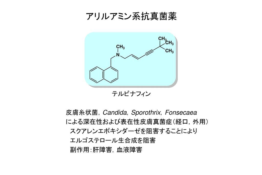 アリルアミン系抗真菌薬 テルビナフィン 皮膚糸状菌,Candida,Sporothrix,Fonsecaea