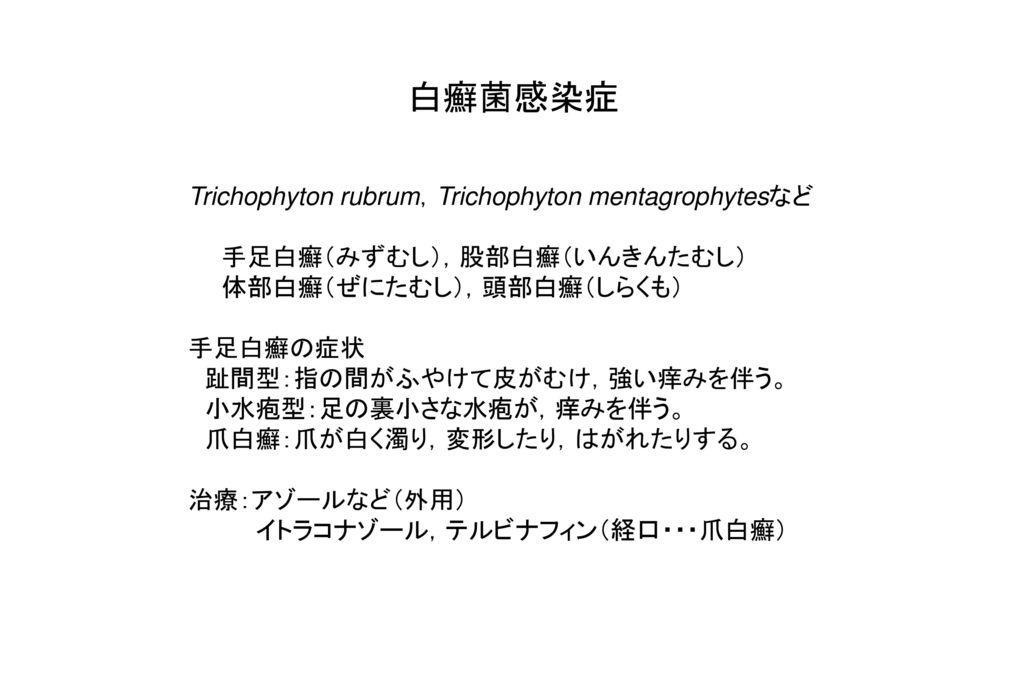 白癬菌感染症 Trichophyton rubrum,Trichophyton mentagrophytesなど