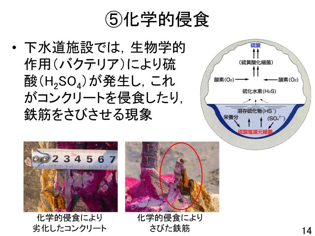 ⑤化学的侵食 下水道施設では,生物学的作用(バクテリア)により硫酸(H2SO4)が発生し,これがコンクリートを侵食したり,鉄筋をさびさせる現象. 化学的侵食により. 劣化したコンクリート. 化学的侵食により.
