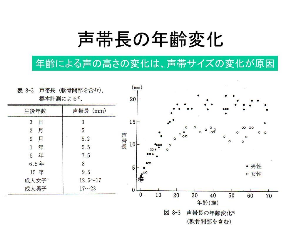 声帯長の年齢変化 年齢による声の高さの変化は、声帯サイズの変化が原因
