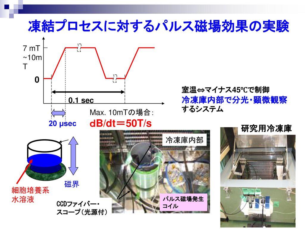 凍結プロセスに対するパルス磁場効果の実験