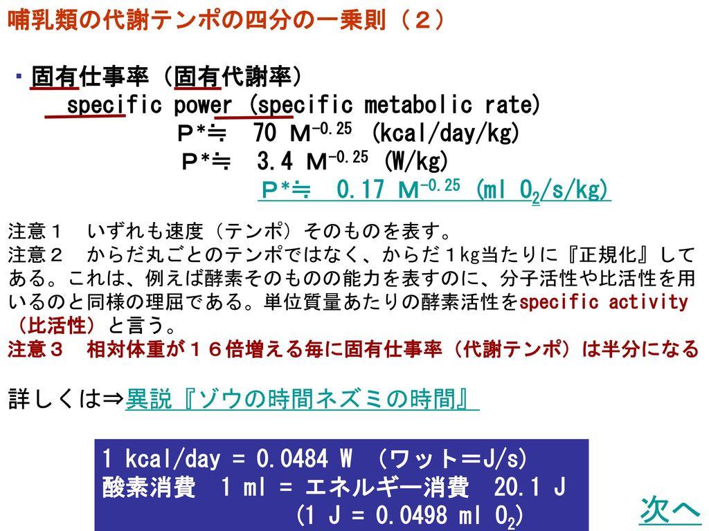 次へ 哺乳類の代謝テンポの四分の一乗則(2) ・固有仕事率(固有代謝率)