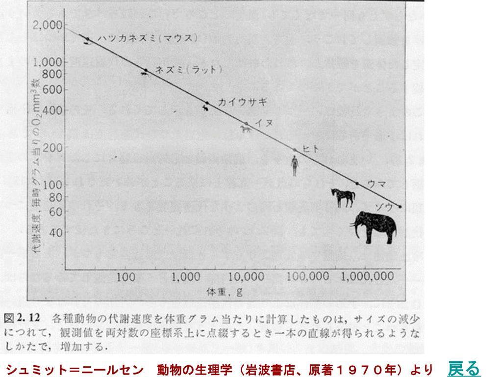 シュミット=ニールセン 動物の生理学(岩波書店、原著1970年)より 戻る