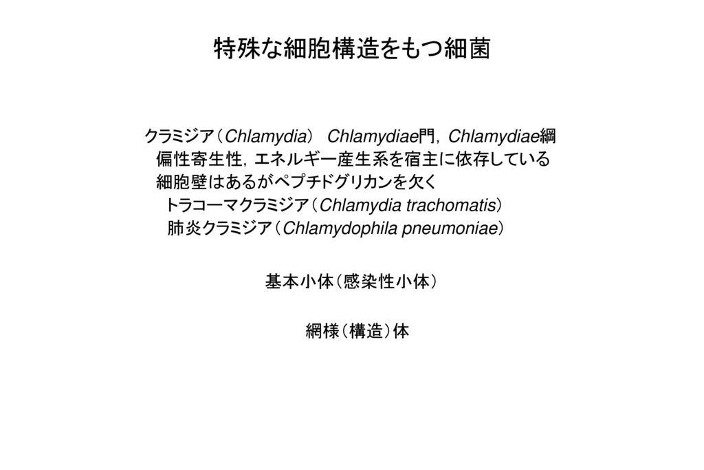 特殊な細胞構造をもつ細菌 クラミジア(Chlamydia) Chlamydiae門,Chlamydiae綱